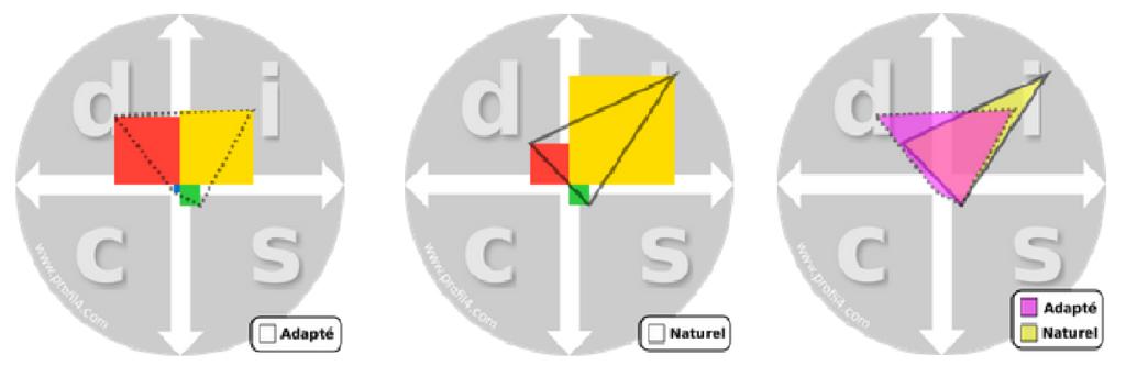 résultats méthode DISC